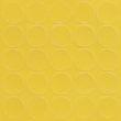073 - żółty kronopol