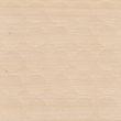330 - mainau birch